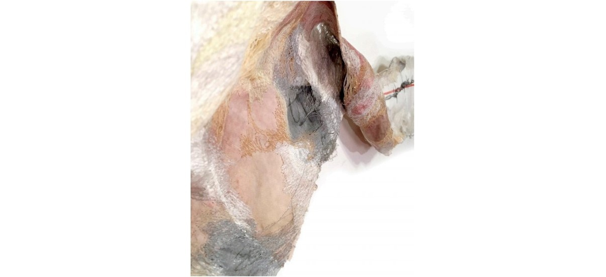 Sónia Aniceto – Peaux Rebelles – 15/11 au 22/12 – Galerie Martine Ehmer, Bruxelles