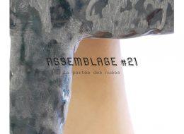 Assemblage #21 – La portée des nuées – 07 au 23/11 – Julio Artist-run Space, Paris