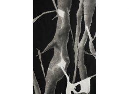 Łukasz Huculak – Héliotropie – 17 au 21/12 – La Galerie du Crous de Paris