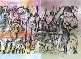 Florentine & Alexandre Lamarche-Ovize  – Rufus – 17/01 au 24/05 – Frac Normandie Caen