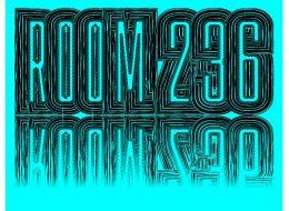 ROOM 236 – 16/01 au 15/02 – Galerie Chloé Salgado, Paris