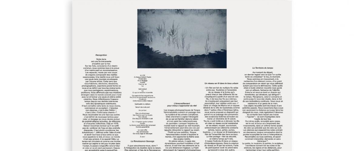 Alizée Gazeau – PAN II – RECOGNITION – 17 au 30/01 – Petite Galerie – Cité internationale des arts, Paris