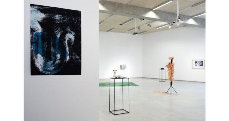 COLLECTION ARTEM 2020 – 01 au 12/02 – École nationale supérieure d'Art et de Design de Nancy