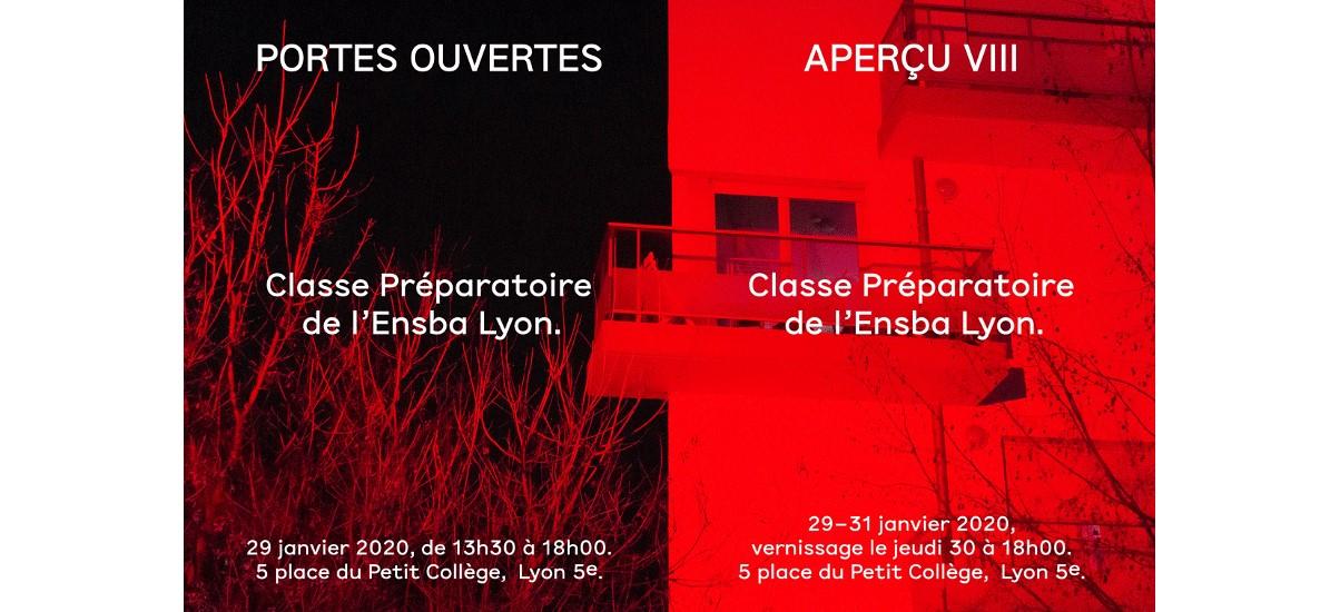 Aperçu VIII – 29 au 31/01 – Classe préparatoire de l'ENSBA Lyon