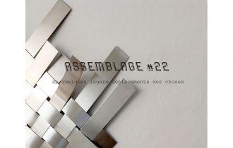 Assemblage #22 De quelques légers déplacements des choses – 18/01 au 08/02 – Julio Artist-run Space, Paris