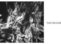 Tudi Deligne –  Vestiges Vue Imprenable – 07 au 28/03 – Galerie Mariska Hammoudi, Paris