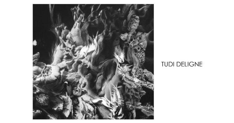 Tudi Deligne –  Vestiges Vue Imprenable – 07 au 20/06 – Galerie Mariska Hammoudi, Paris