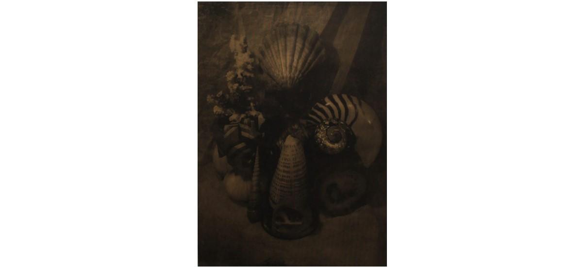 Edouard Wolton – Ultima Thulé – 12/03 au 05/07 – Galerie Les filles du calvaire, Paris