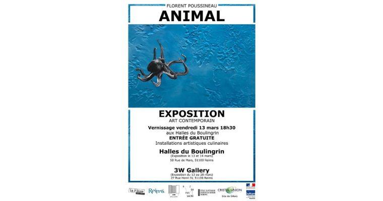 Florent Poussineau – Animal – 13/03 au 28/03 – Halles du Bouligrin et 3W Gallery, Reims