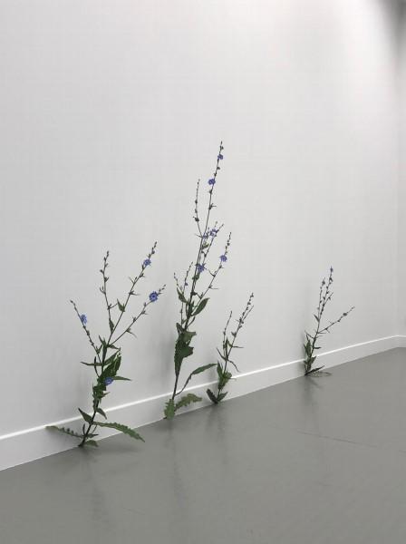 Tony Matelli_exposition-Abandon_Andréhn-Schiptjenko Paris