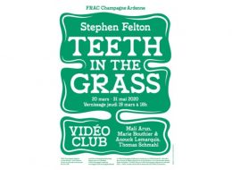 Stephen Felton – Teeth in the Grass – Vidéo Club – 17/06 au 25/10 – FRAC Champagne-Ardenne Reims