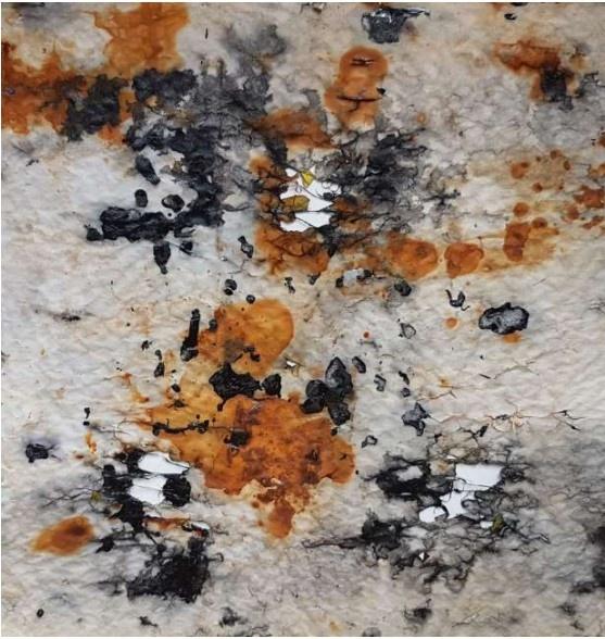 Chantal Fontvieille_ … à travers…_Galerie Françoise Besson_Lyon