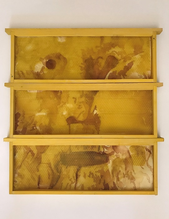 Risque d'exposition..._Dupré & Dupré Gallery_Emma Picard