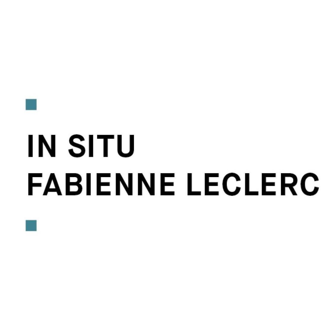 IN SITU - FABIENNE LECLERC