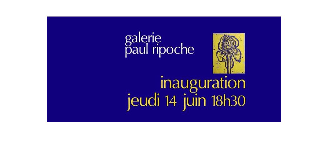 14/06 – IMAGI-MAGIE-MAGES – GALERIE PAUL RIPOCHE – LYON