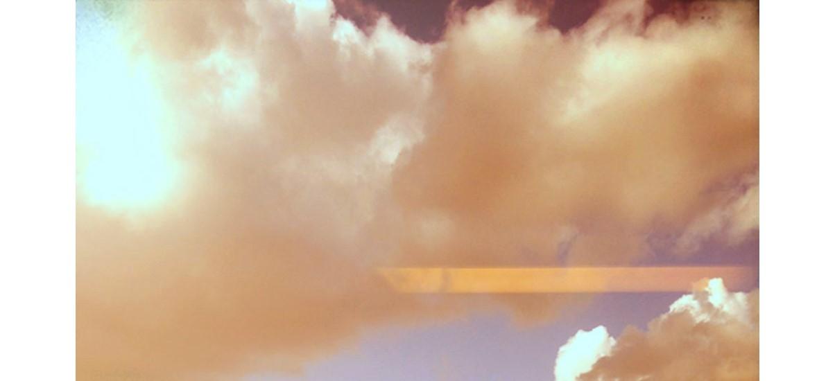 locus amoenus – 17/01 au 02/02 – Plateforme Paris