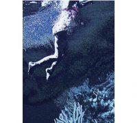 au bout du plongeoir, le grand bain – 02/06 au 01/08 – Galerie Binome, Paris