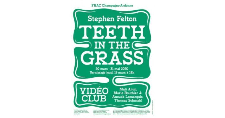 Stephen Felton – Teeth in the Grass – Vidéo Club – 17/06 au 25/10 – FRAC Champagne-Ardenne Reims