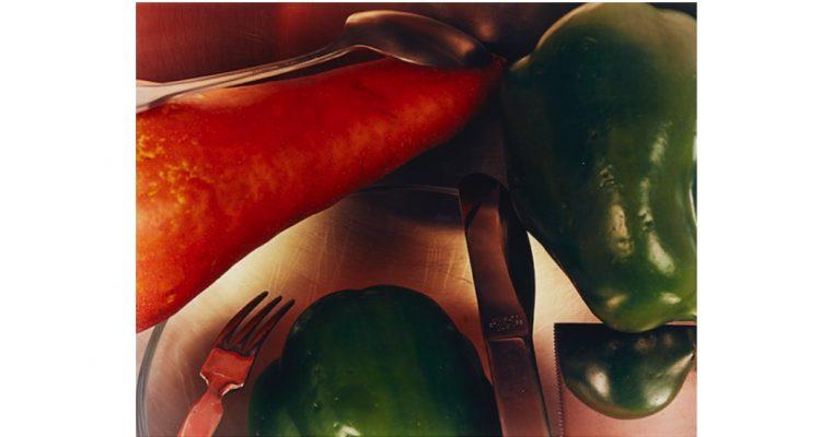 Jan Groover – Tout ce qui est vrai est beau – 08/09 au 24/09 –  Galerie Folia, Paris